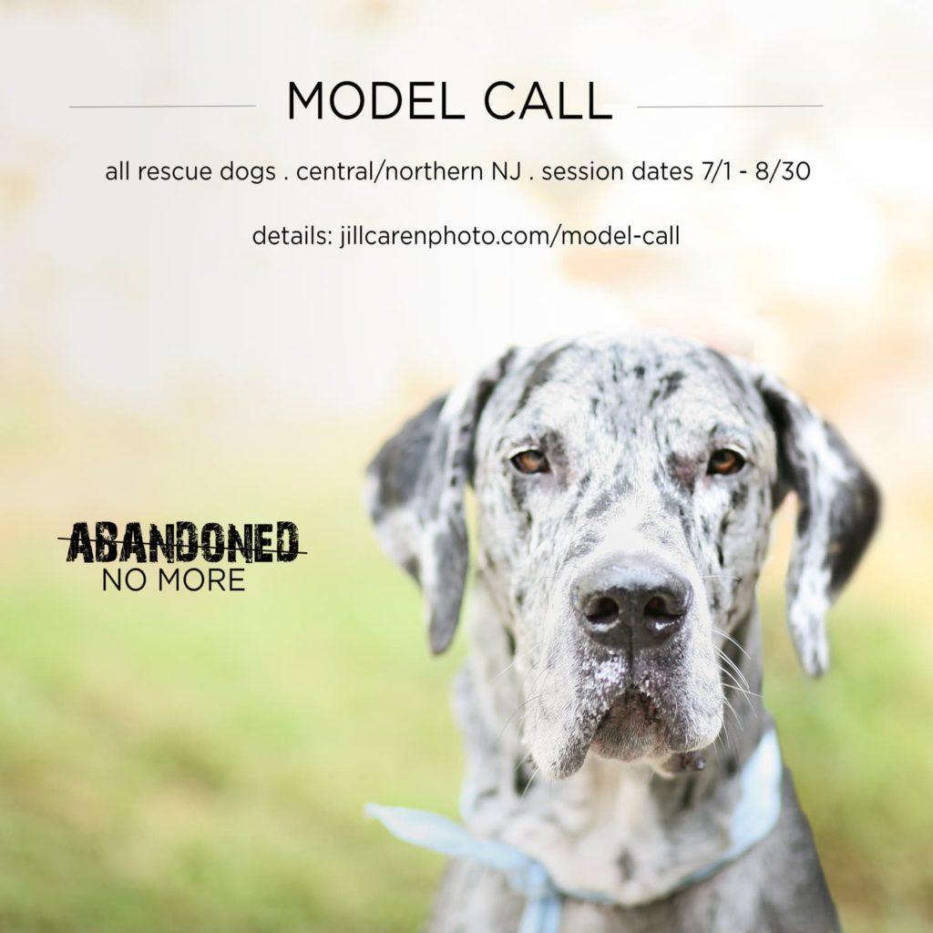 abandoned model call